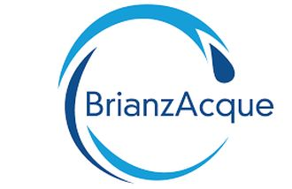 Brianzacque assume