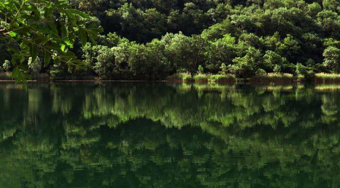 Innovazione sostenibile? Riascoltiamo il cammino dell'acqua