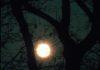 Meteo Brianza domani 14 dicembre