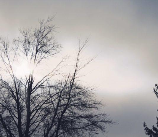 Meteo Brianza 22 novembre Monza