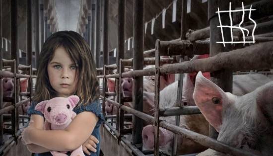 Allevamenti con animali in gabbia