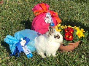 Pasqua Enpa
