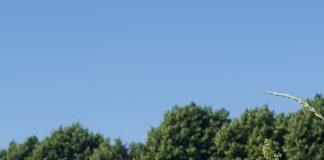 Meteo Brianza 27 agosto Monza