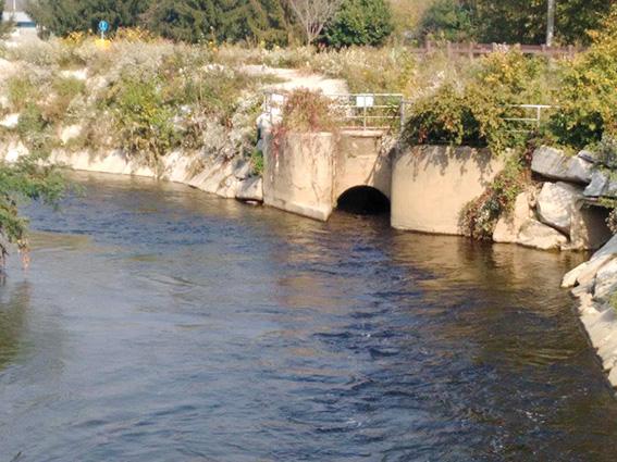 Grazie Al Depuratore Di Monza Acqua Sicura Per Tutti Qui Brianza News