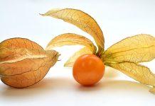 La bacca arancione